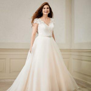 Curvy brides 20190
